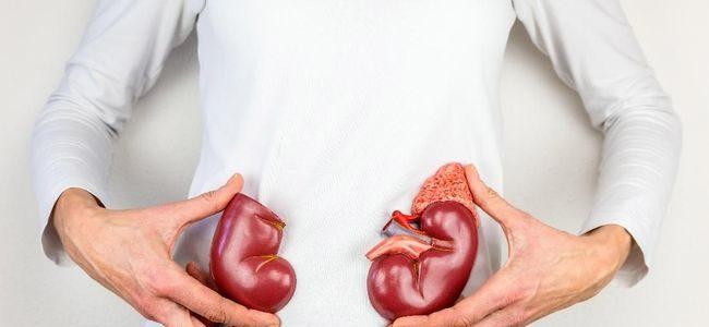 6 Makanan Yang Baik Untuk Kesehatan Ginjal